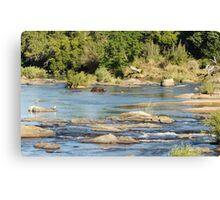African Stream Wildlife - WildAfrika Canvas Print