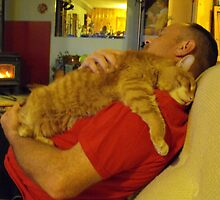 Frank and Les...Blissful Napping!! by Tracy Wazny