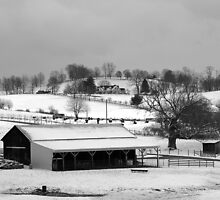 Winter scene in SW Virginia... by drop-thumb
