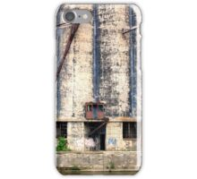 Buffalo's Waterfront Property iPhone Case/Skin