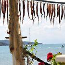 SKIATHOS - Octopuss hanging down by Daniela Cifarelli