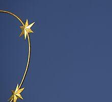Stars by MsMoll