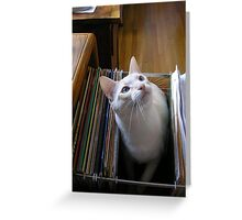 Where Do You Want Me Filed? Greeting Card