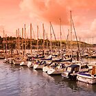 Dusk on the River Dart by Kerry Dunstone