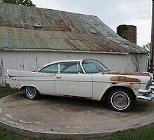 1958 Dodge Royal ~ Barn Sale Find by Sherry Graddy