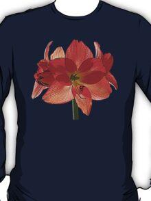 Orange Hippeastrum Amaryllis T-Shirt