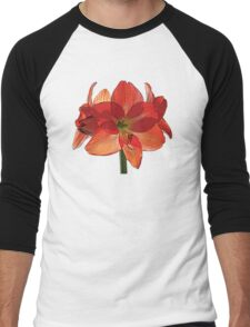 Orange Hippeastrum Amaryllis Men's Baseball ¾ T-Shirt