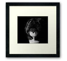 Singin for his supper  Framed Print