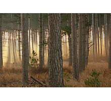 God's Angels~Totogatic Park Wisconsin Photographic Print