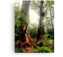 Tingle Tree Canvas Print