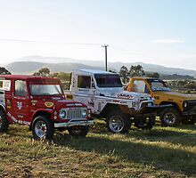 All the Grunt at Melton Mowbray Tasmania by PaulWJewell
