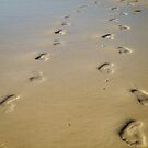 Footprints by Phillip M. Burrow