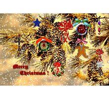 JOY FILLED CHRISTMAS!! Photographic Print