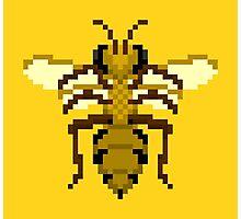 Pixel Buzz Photographic Print