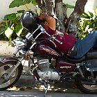 biker's siesta - siesta del motociclista by Bernhard Matejka
