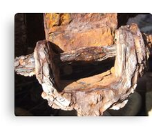 Rust the colours of decay Canvas Print