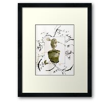 root over rock Framed Print