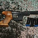 Walther .22 by lozonline