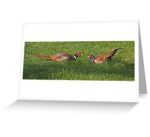 Pheasants with attitude! Greeting Card