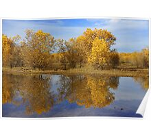 Fall Mirror Poster