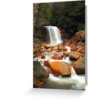 Waterfall in WV  Greeting Card