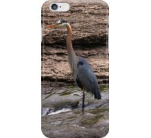 Great Blue Heron at the Falls iPhone Case/Skin