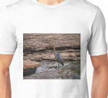 Great Blue Heron at the Falls Unisex T-Shirt