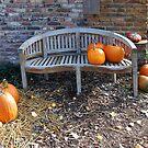 Fall time = pumpkin time by Arie Koene