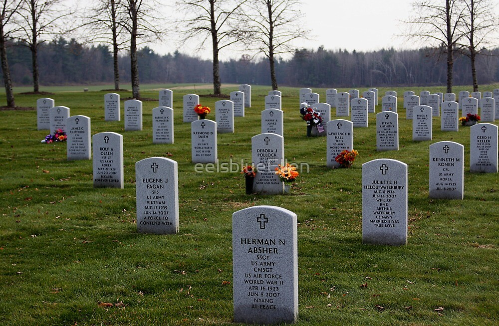 Saratoga National Cemetery by eelsblueEllen