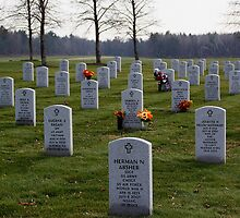 Saratoga National Cemetery by eelsblueEllen