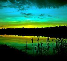 Green Dusk by Paul Gitto