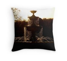 Autumn: Fountain in Regents Park Throw Pillow
