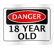 DANGER 18 YEAR OLD, FAKE FUNNY BIRTHDAY SAFETY SIGN Poster