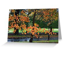 Falling Leaf Greeting Card