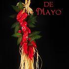 Cinco de Mayo by Trudy Wilkerson