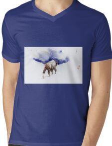 Water and Snow Mens V-Neck T-Shirt