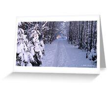 FREEZING SNOWY SOJURN Greeting Card