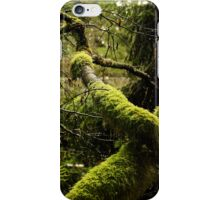Silence in the Green Forest iPhone Case/Skin