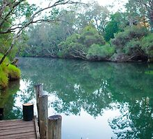 Murray River from the Church Jetty by wt9bind