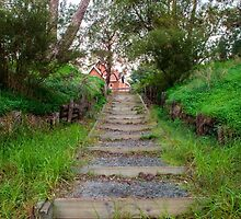 Steps leading to the Pinjarra Church by wt9bind