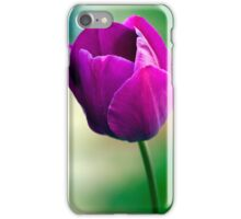 Purple Tulip Flower iPhone Case/Skin
