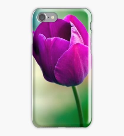 Purple Tulip Flower iPhone Case/Skin