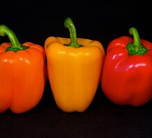 Three Bell Peppers by Jeffrey  Sinnock