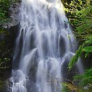 Cascading Waterfall  by Tori Snow