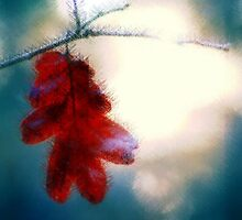 The Last Leaf by Tori Snow