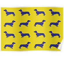 Sausage Dogs - blue & yellow Poster