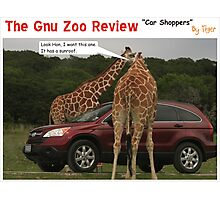 Car Shoppers Photographic Print