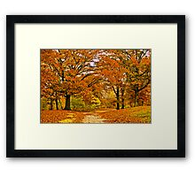 Walk with me Framed Print