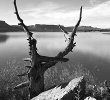 El Vado State Park by KDPhotos