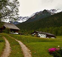 Rural Idyll in Alps by Elzbieta Fazel
